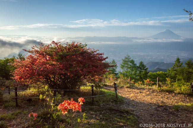 甘利山の富士山撮影ポイント