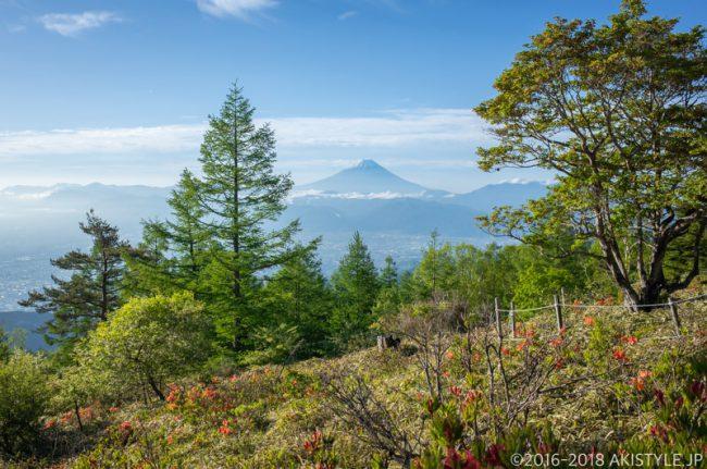 甘利山からの富士山