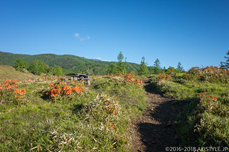 甘利山の展望ポイント