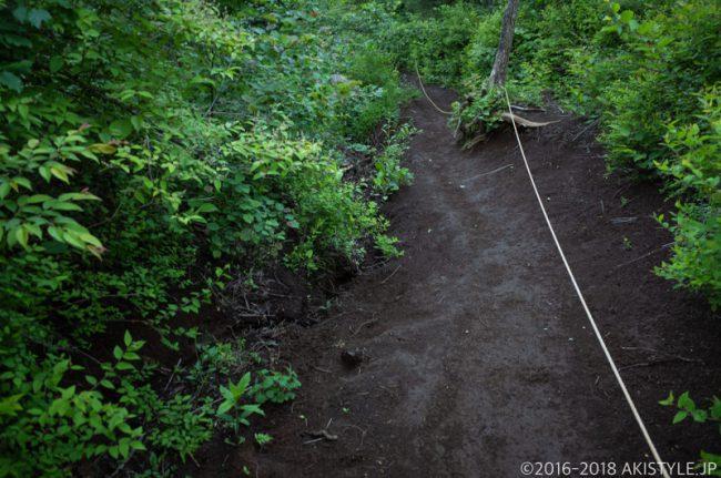 石割山から平尾山への登山道