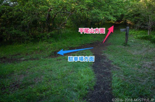 石割山から平尾山への登山道の分岐