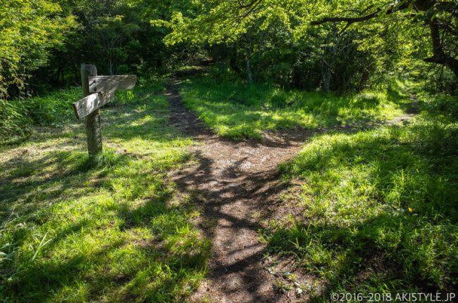 石割山と下山コースの分岐