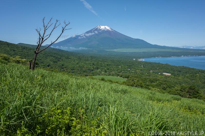鉄砲木ノ頭への登山道から見た富士山