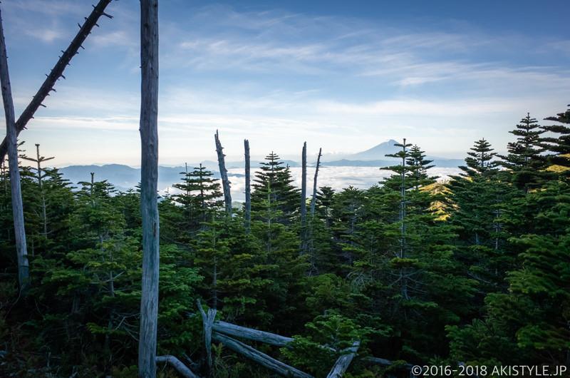 国師ヶ岳の登山道から見る富士山
