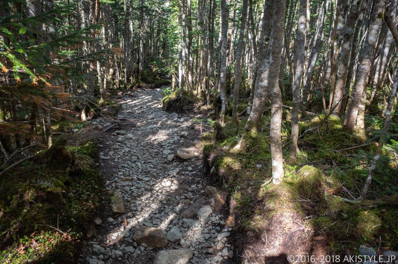 朝日岳から金峰山への登山道