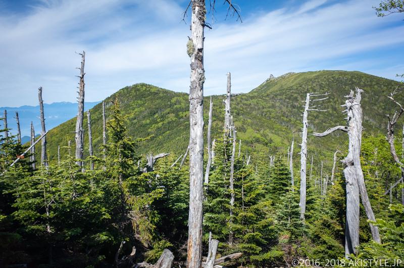 朝日岳から金峰山の登山道から見る五丈岩