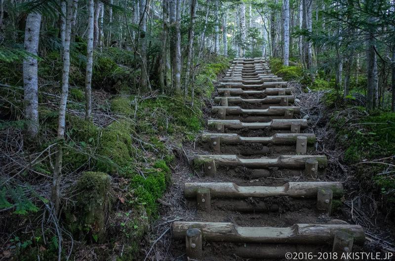 国師ヶ岳の登山道