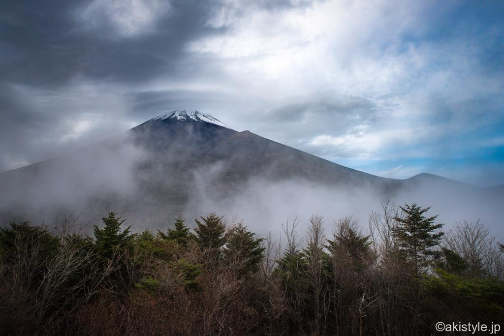 水ヶ塚公園から見る富士山