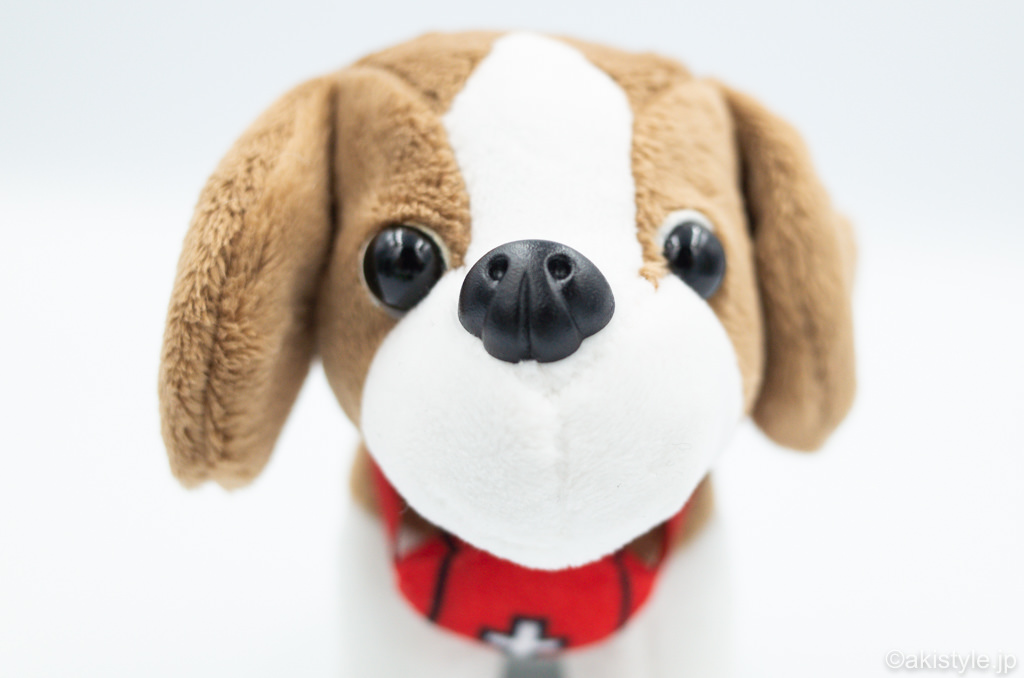 登山犬コジロー