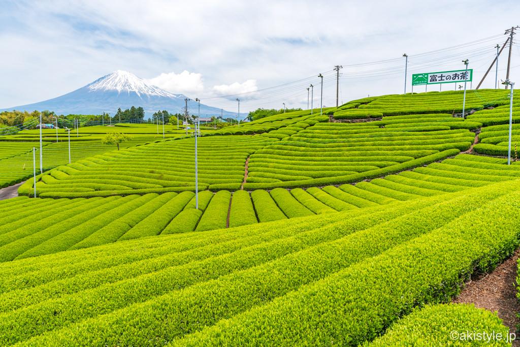 天間の茶畑と富士山