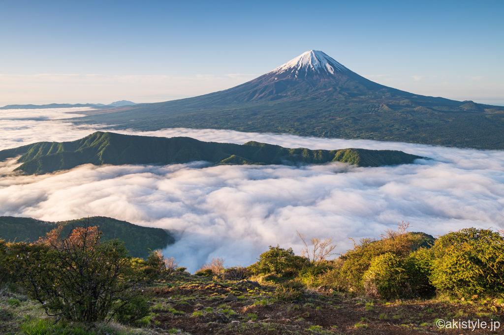 雪頭ヶ岳から見る富士山と雲海