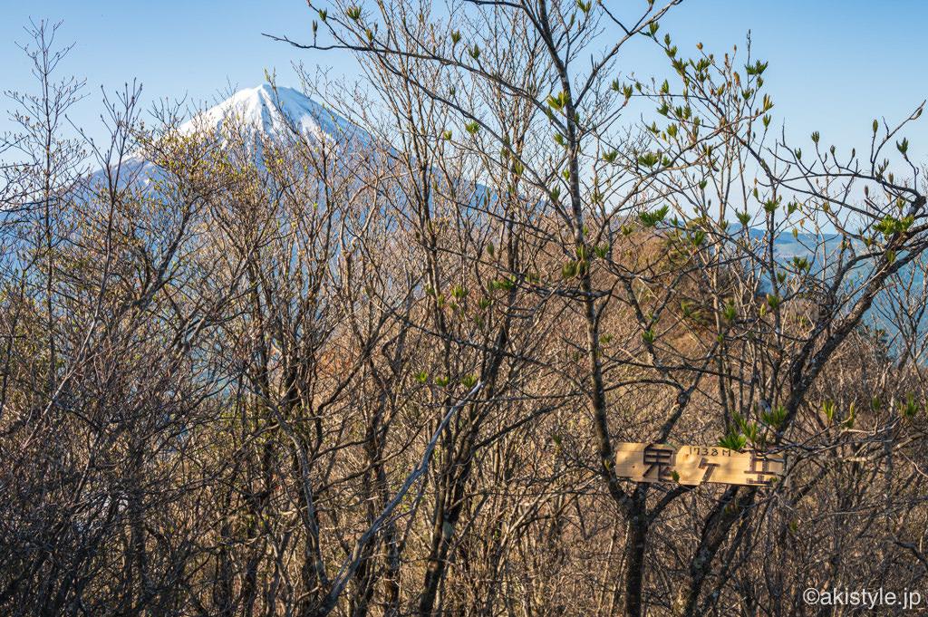 鬼ヶ岳から富士山