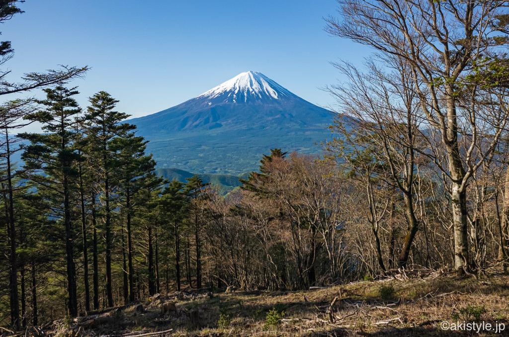 金山から見る富士山