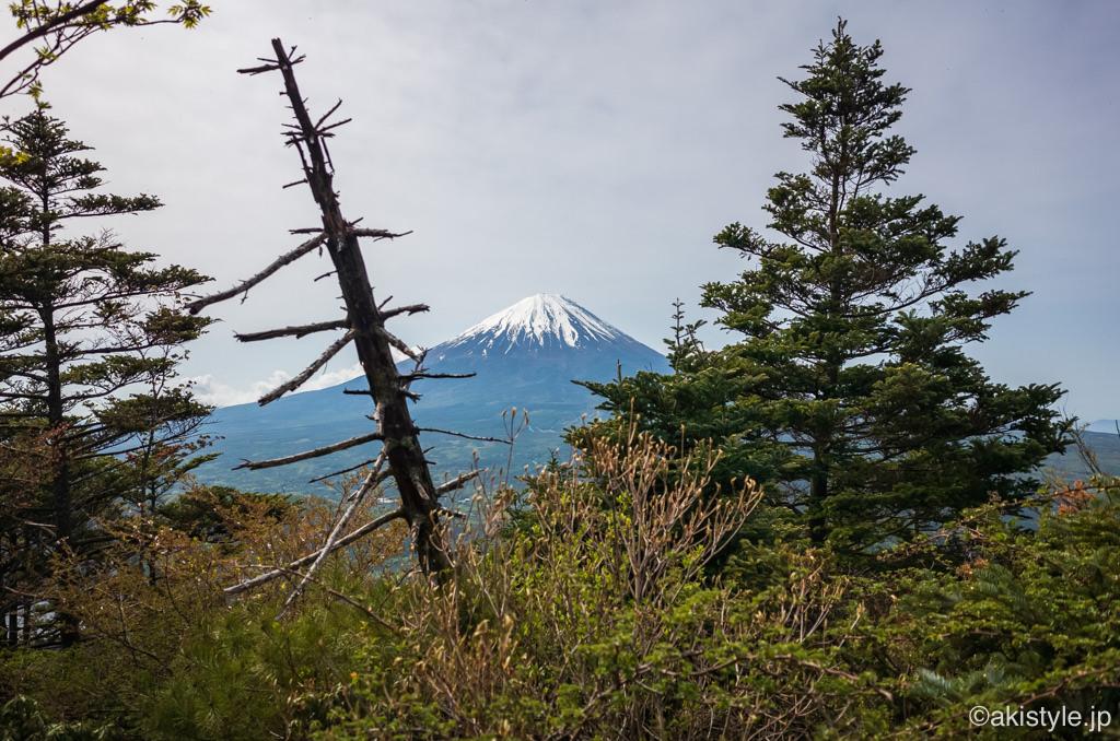 吉沢山から見る富士山